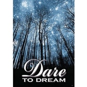 Trend Enterprises® ARGUS® Poster, Dare To Dream