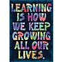 Trend Enterprises® ARGUS® Poster, Learning Is How We