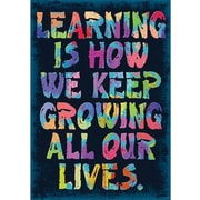 Trend Enterprises® ARGUS® Poster, Learning Is How We Keep Growing