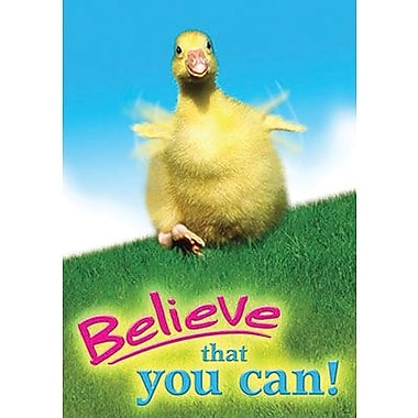 Trend Enterprises® ARGUS® Poster, Believe That You can!