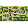 Teacher's Friend® Bulletin Board Set, Rainforest Plants and Animals