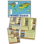 Edupress® Bulletin Board Set, World Biomes