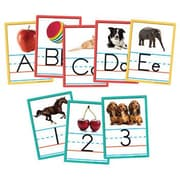 "Edupress EP3156 DieCut 6"" x 8"" Alphabet and Numbers Instructional Accents, Multicolor"