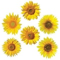 Edupress® Toddler - 12th Grades Bulletin Board Accents, Sunflowers