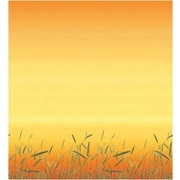 Pacon® Fadeless® Design Paper, Prairie Grass, 48 x 12'
