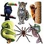 Edupress® Toddler - 6th Grades Bulletin Board Accents,