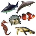 Edupress® pre-school - 6th Grades Bulletin Board Accents, Ocean Life