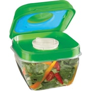 Fit & Fresh Salad Shaker Container with Removable Ice Pack and Dressing Dispenser