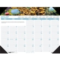 2014 House of Doolittle® Earthscapes™ Sea Life Desk Pad Calendar, 22in. x 17in.