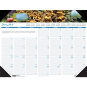 2014 House of Doolittle® Earthscapes™ Sea Life Desk Pad Calendar, 22 x 17