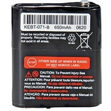 Motorola 53615 Nickel Metal Hydride Battery Upgrade Kit