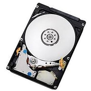 IBM® 300GB SAS (6 Gb/s) 10000 RPM 2 1/2in. Internal Hard Drive (90Y8913)