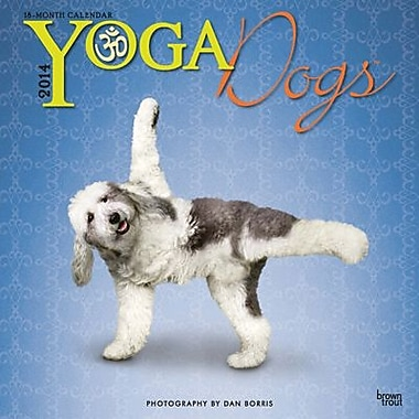2014 Yoga Dogs Wall Calendar, 12in. x 12in.
