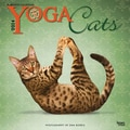 2014 Yoga Cats Wall Calendar, 12in. x 12in.