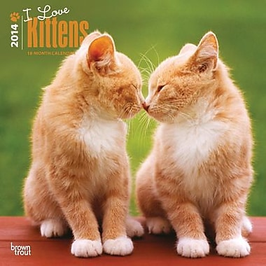2014 I Love Kittens Wall Calendar, 12in. x 12in.
