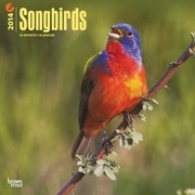 2014 Songbirds Wall Calendar, 12 x 12