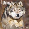 2014 Wolves Wall Calendar, 12in. x 12in.