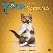 2014 Yoga Kittens Mini Wall Calendar, 7 x 7