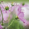 2014 Inspiration Mini Wall Calendar, 7in. x 7in.