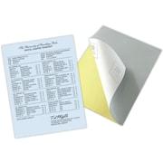 "Blanks/USA® Kan't Kopy® 8 1/2"" x 11"" 20 lbs. K1 Carbonless Security Paper, Blue, 2500/Case"