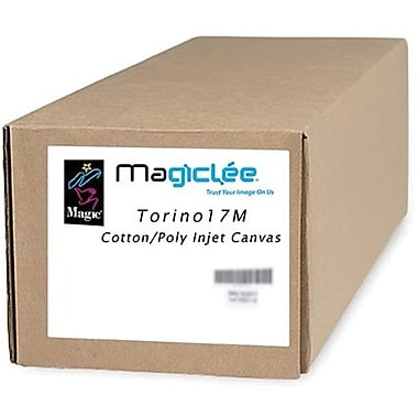 Magiclee/Magic Torino 17M 17