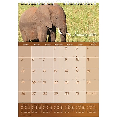 2014 Brownline Imagine Wildlife Wall Calendar, 12in. x 17in.