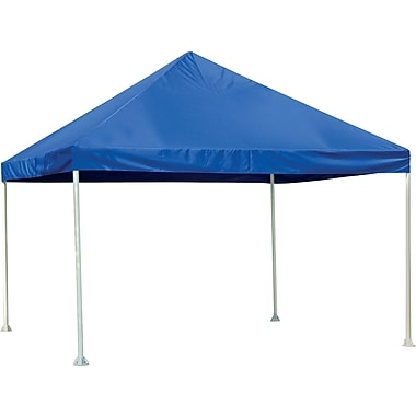 ShelterLogic 12' × 12' Canopy, 2