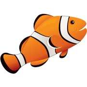 Ashley® Magnetic Whiteboard Eraser, Clown Fish, Grades All