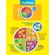 Creative Teaching Press™ Chart, My Plate