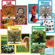 "Edupress EP3188 8"" x 6"" Straight The Four Seasons Spanish/English Instructional Accents, Assorted"