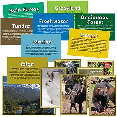 Edupress® 1st - 8th Grades Instructional Accents, Biomes