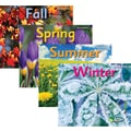 Capstone® Press Seasons Book Set