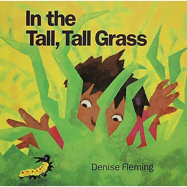 Macmillan In the Tall, Tall Grass Big (Paperback) Book