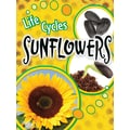 Teacher Created Resources® Life Cycles Sunflowers Book