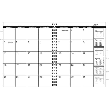 AT-A-GLANCE® Multi-Year Monthly Refill, 9in. x 11in.