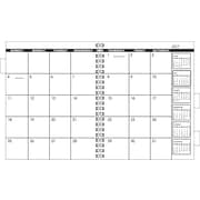 """AT-A-GLANCE® 2015 Refillable Multi-Year Monthly Planner Refill, January - December, White, 9"""" x 11"""""""