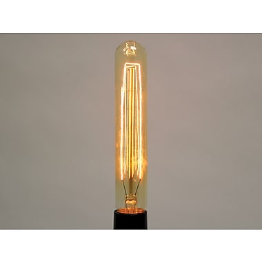 20 Watt Bulbrite® T9 Antique E26 Nostalgic Tubular Collection Decorative Bulb (4-Pack)