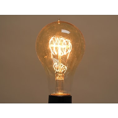 40 Watt Bulbrite® A21 Antique E26 Nostalgic Decorative Bulb (2-Pack), Warm White