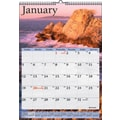 2015 AT-A-GLANCE® Scenic Wall Calendar, 12in. x 17in.