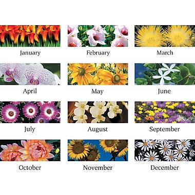 "2014 AT-A-GLANCE® Floral Panoramic Desk Pad, 22"" x 17"""