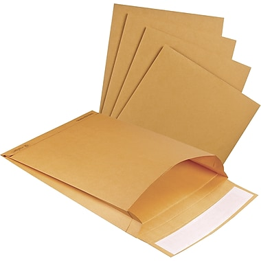 Staples® Envelopes Kraft Expansion 10