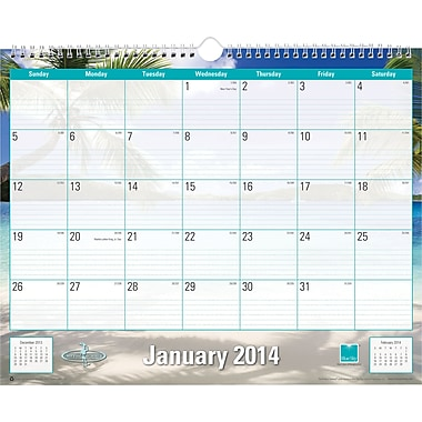 2014 Blue Sky Endless Summer Wire-O Wall Calendar 15in.x12in.