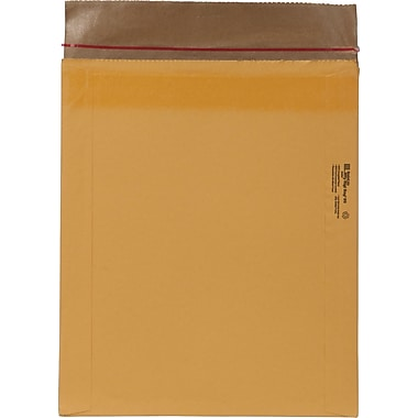 Rigi Self Seal mailer 12.5in.X15in.  #6 100PK