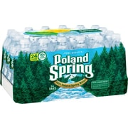 Poland Spring® 100% Natural Spring Water 16.9-ounce Plastic Bottle, 24/Box