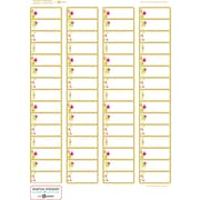 Martha Stewart Home Office™ with Avery™ Easy Peel® White Return Address Labels 19030, 2/3 x 1-3/4, Pack of 180