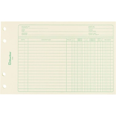 Blueline® Mini - Ledger Refill Sheets, 6