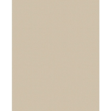 Staples® Two Cool Foam Board, Sandstone/Graystone, 20