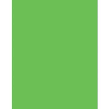 Staples® Two Cool Foam Board Fluorescent Green/Orange, 20
