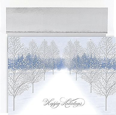 Great Papers Holiday Cards Winter Path , 16/Count 300115