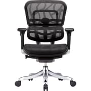 "Raynor Eurotech Ergohuman Mid Back Executive Chair, Patterned Mesh, Black, Seat: 20""W x 19 3/10""D, Back: 20 7/10""W x 32""H"
